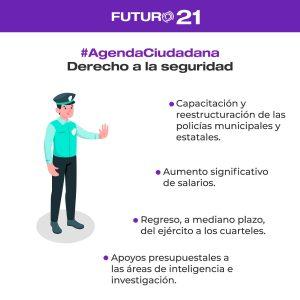 derecho a la seguridad agenda ciudadana
