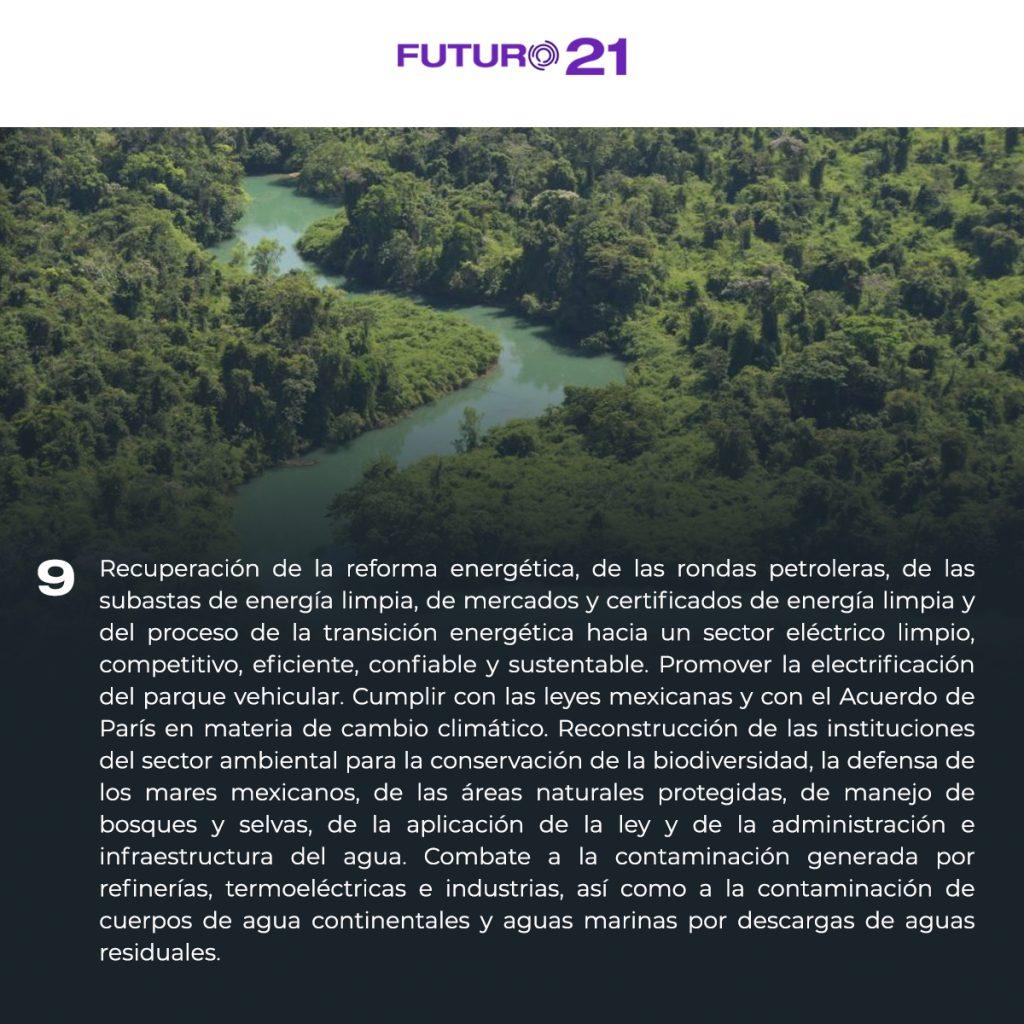 plataforma para cuidar el medio ambiente